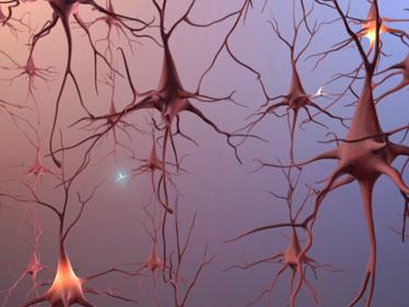 Bệnh Alzheimer's âm thầm mà nguy hiểm như thế nào 10