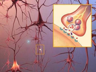 Bệnh Alzheimer's âm thầm mà nguy hiểm như thế nào 11