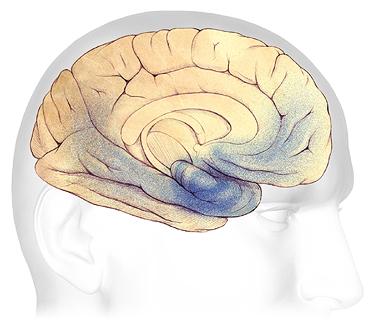 Bệnh Alzheimer's âm thầm mà nguy hiểm như thế nào 19