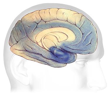 Bệnh Alzheimer's âm thầm mà nguy hiểm như thế nào 20