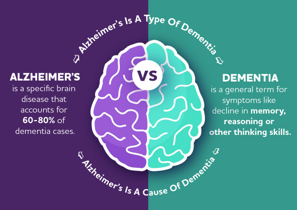 A brain with descriptions on either hemisphere describes the difference between Alzheimer's and dementia.